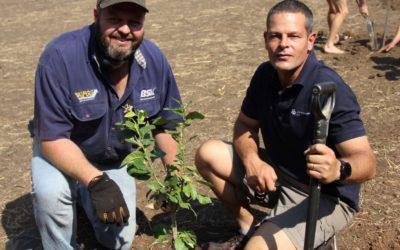 AfriForum se Brits-tak en Helpende Hand plant bome en knap skool op